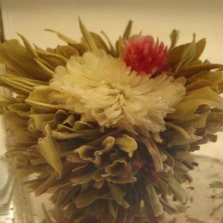 Fleur de thé Délice de l'impératrice