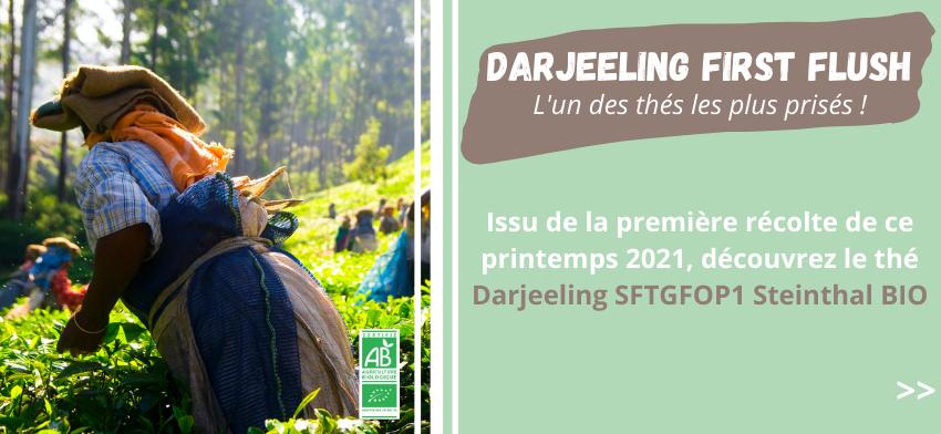 Darjeeling First flush printemps 2021